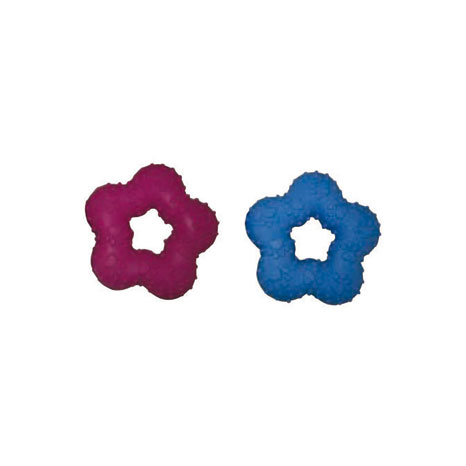 Companion Rubber Star Shaped Toy