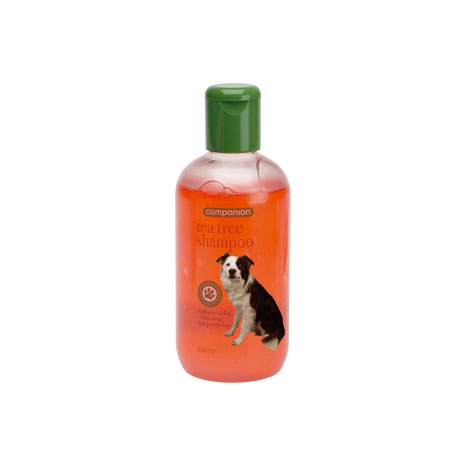 Companion Tea Tree Shampoo
