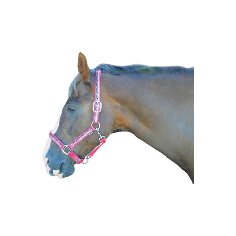 Hy Pony Love Head Collar