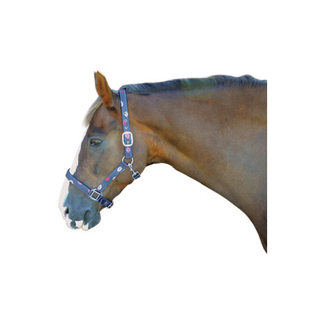 Hy Kiss Head Collar