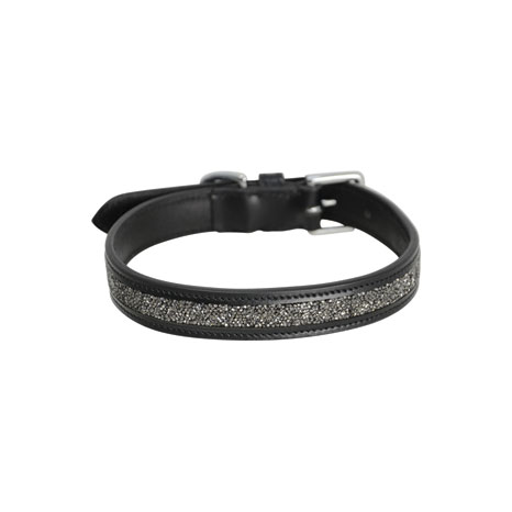 Hy Encrusted Dog Collar