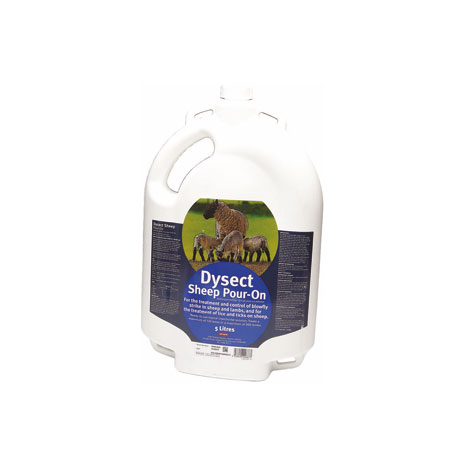 Dysect Sheep Pour-On