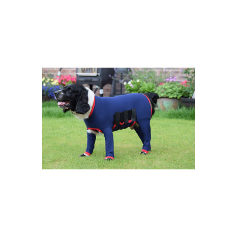 Belvoir Rug Company Dog Onesie