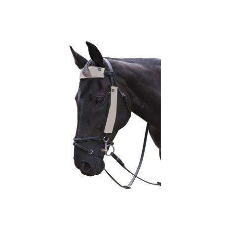 HyVIZ Silva Flash Reflective Bridle Set