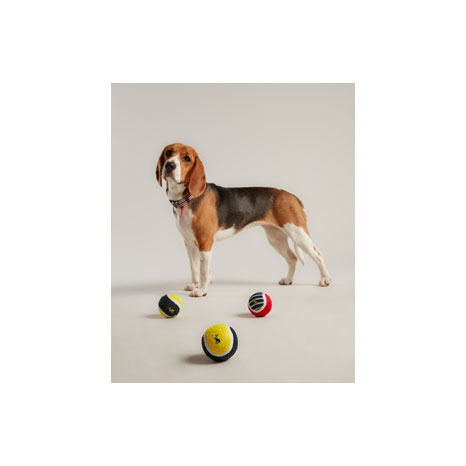 Joules Outdoor Balls
