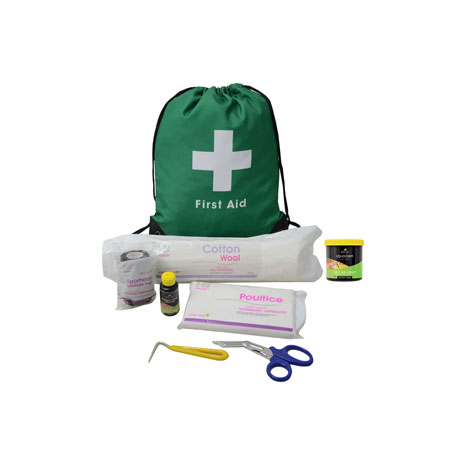Lincoln First Aid Travel Bag
