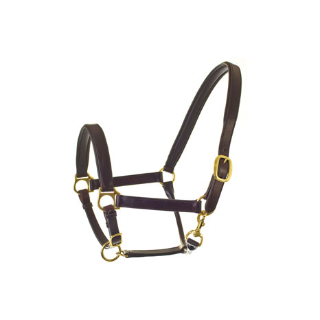 HyCLASS Leather Padded Head Collar