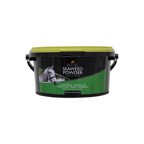 Lincoln Seaweed Powder