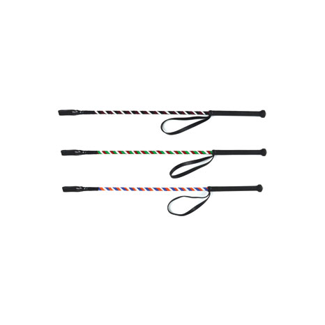 HySCHOOL Spiral Riding Whip