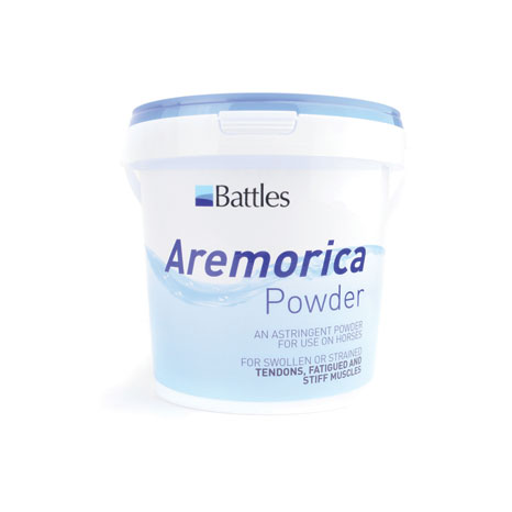 Battles Aremorica Powder
