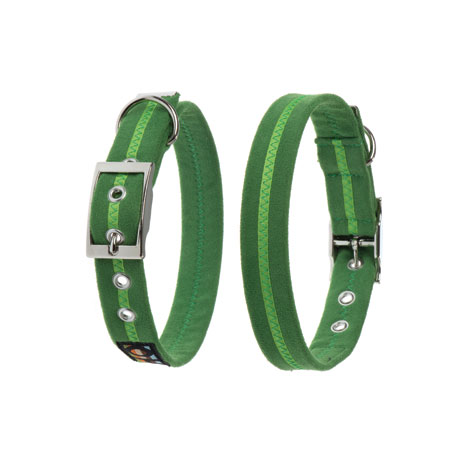 Oscar & Hooch Dog Collar