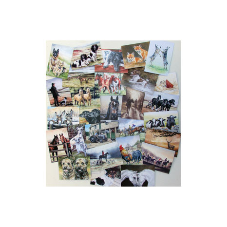Caroline Cook Equestrian & Countryside Cards